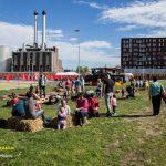 Foto's Festival Het Circus