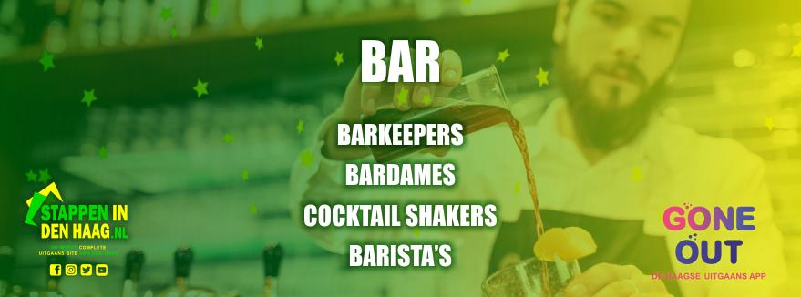 barkeeper-cocktailshaker-vacature-werken-haagse-horeca-denhaag-stappenindenhaag