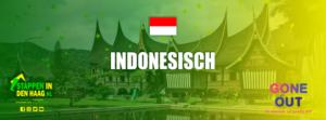 indonesisch-eten-denhaag-keuken-indonesie-rames-kunning-rendang-stappenindenhaag