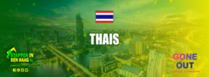 thais-eten-denhaag-keuken-thailand-tomkhakai-padthai-stappenindenhaag